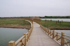 lång brokorridor Royaltyfri Bild