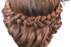 Lång brun flätad tråd för hår. Tillbaka sikt. Fotografering för Bildbyråer