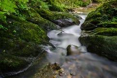 Lång exponering av en liten bergliten vik som spolar till och med de mossiga klipporna och ormbunkarna Royaltyfri Foto
