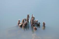 Lång exponering av iskalla träpyloner Royaltyfri Foto