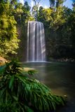 Lång exponering sköt av Millaa Milla Falls i sommaren i Queensland, Australien royaltyfri foto