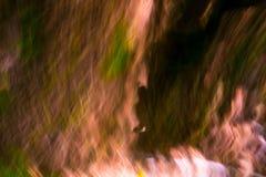 Lång exponeringsabstraktion av den gröna skogen i sommar Royaltyfri Fotografi