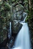 Lång exponeringsframdel på sikt av vattenfallet Arkivfoton