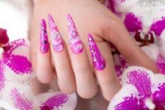 Lång härlig manikyr med blommor på kvinnliga fingrar Spikar design Närbild arkivfoto