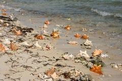 Lång Kay strand Arkivfoto