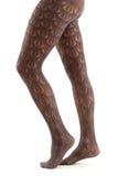 Lång kvinnlig för ben i strumpbyxor på white royaltyfria bilder