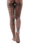 Lång kvinnlig för ben i strumpbyxor på white royaltyfri foto