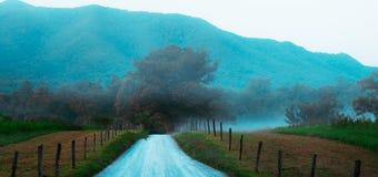 Lång landsväg i den Cades lilla viken royaltyfri bild