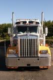 lång lastbil för transportsträcka Royaltyfria Bilder