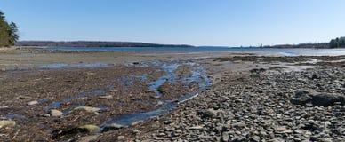 Lång liten vikvattenrunoff i Searsport, Maine panoramautsikt Arkivfoto