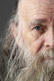 lång manpensionär för skägg Arkivfoto