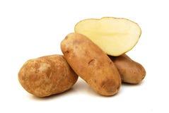 Lång rödbrun potatis arkivfoto