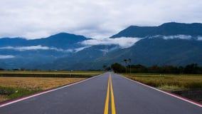 Lång rak väg längs vetefält Royaltyfri Fotografi