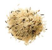 lång rice Arkivbild