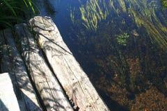 lång skjuten flodryss för exponering Fotografering för Bildbyråer