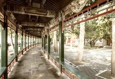 lång slottsommar för korridor Arkivfoton