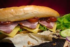 Lång smörgås med kött, grönsaker och grillfestsås Fotografering för Bildbyråer