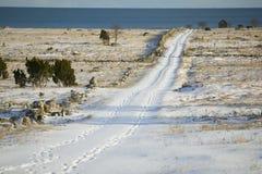 Lång snö dold road.JH Royaltyfri Fotografi
