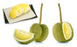 Lång stam eller Kan yao durian, den dyraste durianen Royaltyfria Bilder