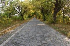 Lång stenväg med en grå sten Arkivfoto