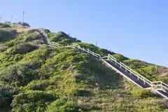Lång trätrappa till överkanten av den höga dyn arkivfoton