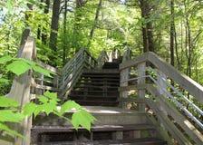 Lång trappa upp från Lake Michigan Royaltyfri Fotografi