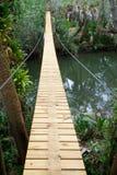 Lång upphängning som går bron i vändkretsar Royaltyfri Bild