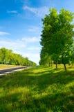 lång väg för gröna kullar till arkivfoton