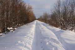 Lång väg i snö arkivbilder