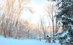 Lång vinter som väntar på våren fotografering för bildbyråer