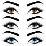 långa ögonfransögon Arkivfoton