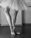 Långa ben av ballerina i toeshoe Royaltyfria Foton