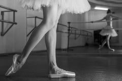 Långa ben av ballerina i toeshoe Royaltyfri Fotografi