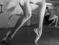 Långa ben av ballerina i toeshoe Royaltyfria Bilder