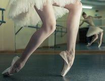 Långa ben av ballerina i toeshoe Royaltyfri Bild