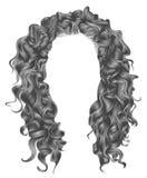 Långa grå färgfärger för lockiga hår peruk för skönhetmodestil Arkivbilder