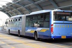långa ljusa bussar Royaltyfria Foton