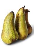 långa pears tre Royaltyfria Foton