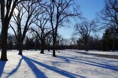 Långa skuggor med vintersolen Assiniboine parkerar, Winnipeg, Manitoba, Kanada royaltyfri foto