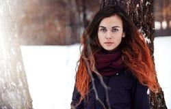 Långhårig brunett i ett vinteromslag Royaltyfri Fotografi
