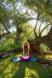 Långhårig sexig kvinna för ung älskvärd rödhårig man i den tillbaka sikten som gör yogaövningar med händer och med textsidan upp  royaltyfria foton