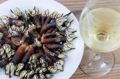 Långhalsar och vin Royaltyfri Fotografi
