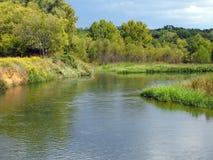 Långsam flod i äng med träd Royaltyfri Fotografi