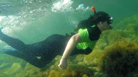 långsam rörelse Attraktivt simma för ung flicka som är undervattens- stock video