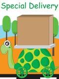 Långsam toppen leverans för sköldpadda Arkivfoton