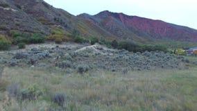 Långsamma Mo Video av det bergiga landskapet lager videofilmer
