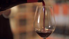 Långsamt hällande rött vin in i ett vinexponeringsglas Den kvinnliga handen häller upp vin in i ett slut för vinexponeringsglas arkivfilmer