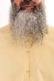 långt ansikts- hår för skägg Royaltyfria Bilder