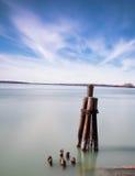 Långt foto för exponeringsdagmateriel av träpyloner i Lake Erie Royaltyfri Fotografi