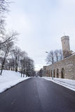 Långt Herman (Pikk Herman) torn i Tallinn, Estland Arkivbild